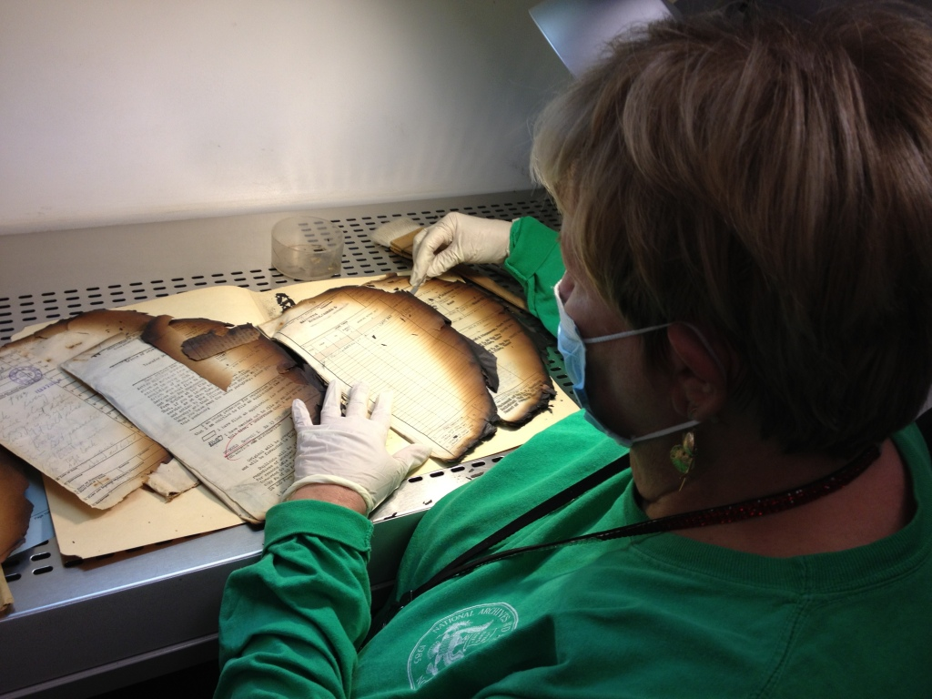 Donna Judd examines damaged documents at her work station.