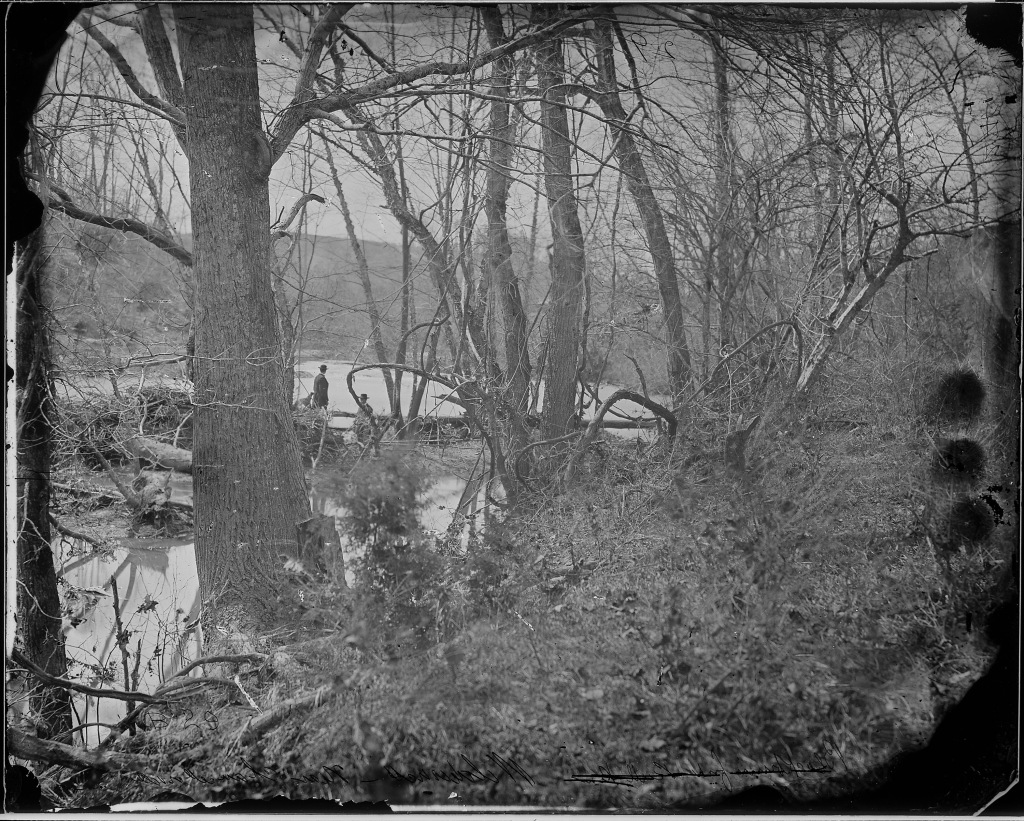Wilderness, near Chancellorsville, Virginia, 1963. (National Archives Identifier 524447)