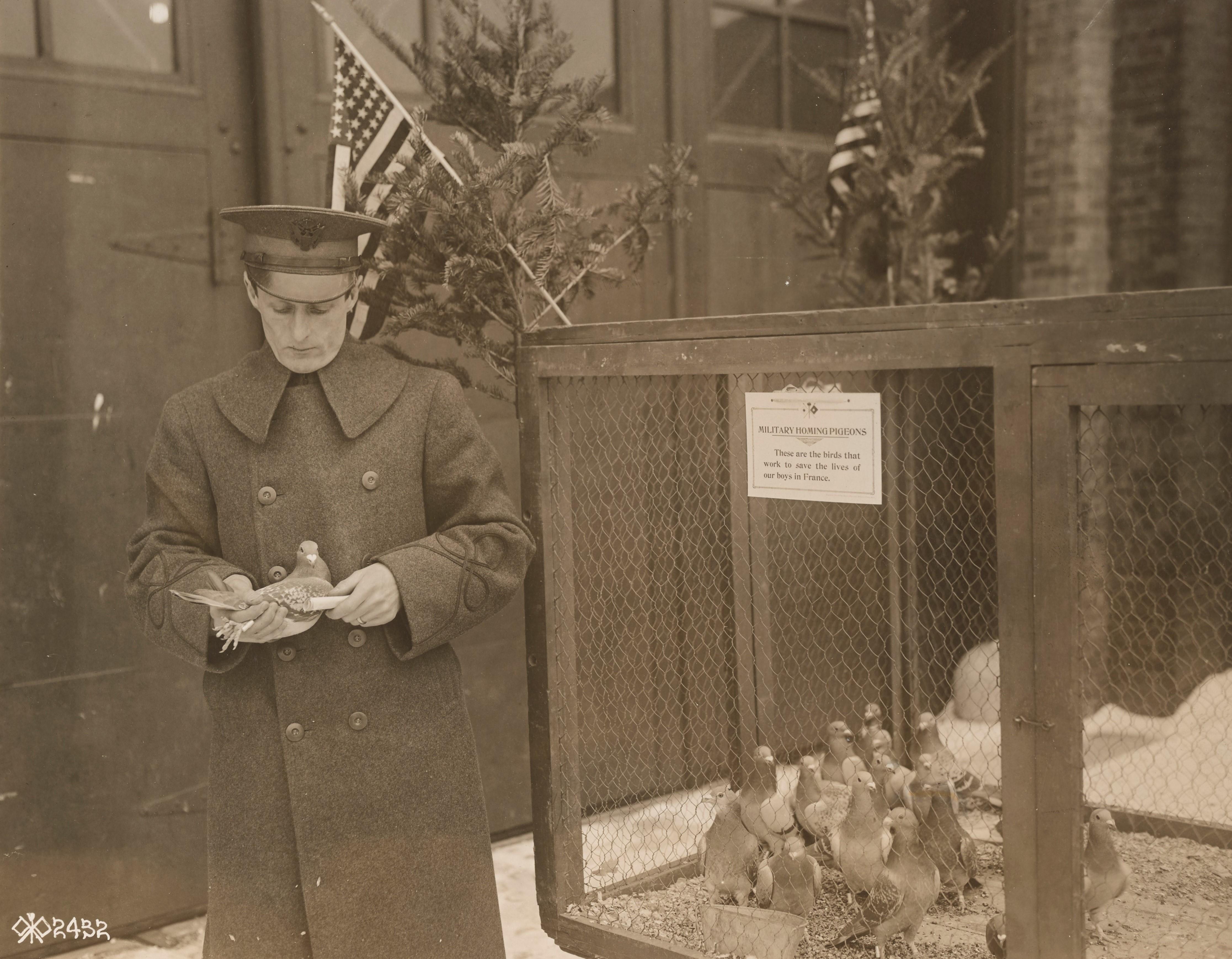 Allied leaders of World War I